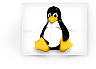 Online Poker for Linux
