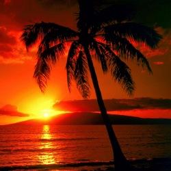 Hawaii iGambling Legislation an Uphill Struggle