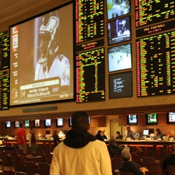 US Sports Betting Ban Should Be Overturned